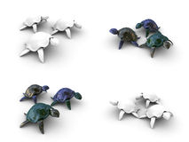 Turtles 3d. Model, Set consisting of different foreshortenings Royalty Free Stock Photos