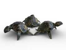 Turtles 3d models. Models of stone turtles on a white background Stock Photo