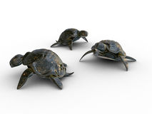 Turtles 3d models. Models of stone turtles on a white background Stock Photography
