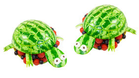 Turtles carved from a watermelon Stock Photos