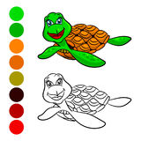 Turtles coloring book. Royalty Free Stock Images