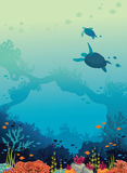 Turtles, coral reef, fishes, underwater sea. Royalty Free Stock Image