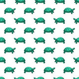 Turtles pattern Stock Photo