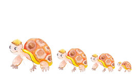 Turtles in a row. For continued growth Stock Photo