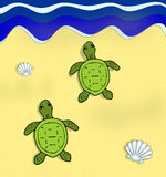 Turtles. Two green turtles heading for the sea Royalty Free Stock Photo