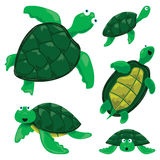 Turtles. Vector set of turtle cartoons Stock Images