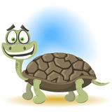 Turttles Stock Images