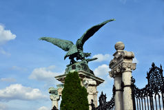 Turul, das Symbol von Ungarn, gegen blauen Himmel lizenzfreie stockfotos