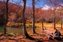 Turyści cieszą się jesień las przy Dokko stawem Zdjęcie Royalty Free