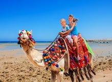 Turyści jedzie wielbłąda na plaży Egipt obrazy royalty free