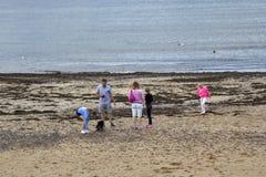 Turyści ma zabawę w Eyemouth w Szkocja, UK 07 08 2015 Zdjęcie Royalty Free