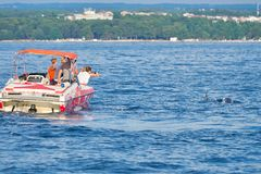 Turyści na łodzi w poszukiwaniu delfinów obraz stock