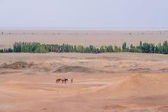 Turyści na koniach podróżuje w Gobi pustyni przeglądać od dziejowego miejsca Yang Przechodzą, w Yangguan, Gansu, Chiny zdjęcia stock