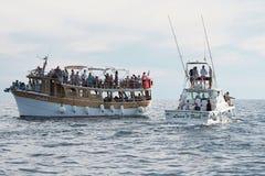 Turyści na wycieczkowych łodziach z wybrzeża Porec w Chorwacja zdjęcia royalty free