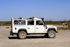 Turyści odwiedza Camargue 4x4 Fotografia Stock