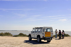 Turyści odwiedza Camargue 4x4 Fotografia Royalty Free