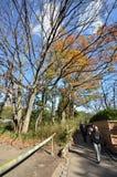 Turyści odwiedzają Arashiyama na Grudniu 09, 2014 w Kyoto Obrazy Royalty Free