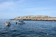 Turyści przy Marieta wyspami Fotografia Stock