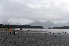 Turyści przy stopą Aguila lodowiec Fotografia Stock