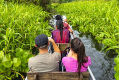 Turyści w czółnie w amazonka tropikalnym lesie deszczowym fotografia royalty free