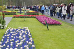 Turyści w Keukenhof ogródzie Kwiecień 2015 Obrazy Stock