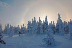 Turyści w zima lesie obrazy royalty free
