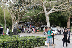 Turysta chodząca wycieczka turysyczna Obrazy Royalty Free