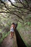 Turysta chodzi wzdłuż irygacyjnych kanałów Historyczny dostawa wody system, znać jako Levada w tropikalnym lesie, madery wyspa Obraz Royalty Free
