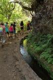Turysta chodzi wzdłuż irygacyjnych kanałów Historyczny dostawa wody system, znać jako Levada w tropikalnym lesie, madery wyspa, Zdjęcia Stock