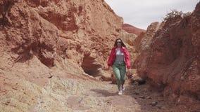 Turysta chodzi wzdłuż terenu górzystego Młoda kobieta podróżnik z plecakiem czerwieni góry jak dalej i ziemia, zdjęcie wideo