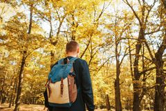Turysta lub podróżnik z plecakiem w jesień lesie fotografia stock