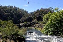 Turysta na wąwozu Scenicznym Chairlift w Launceston Tasmania Australia zdjęcie royalty free