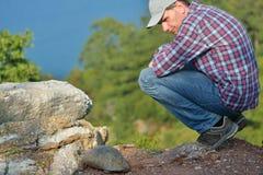 Turysta ogląda tortoise Obrazy Stock