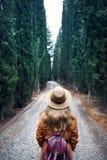 Turysta w kapeluszu przy cyprysową aleją Zdjęcie Stock