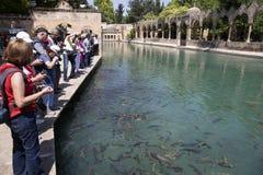 Turysta wizyta Balikligol w Sanliurfa fotografia royalty free