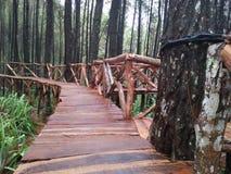 turysty most budujący Indonezyjskim rzędem zdjęcie stock