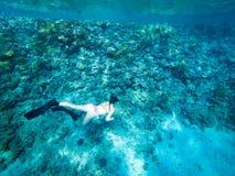 Turysty Snorkeling Turkusowy Czerwony morze Egipt zdjęcia stock