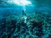 Turysty Snorkeling Turkusowy Czerwony morze Egipt zdjęcie stock