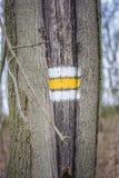 Turysty znak na drzewie Obrazy Royalty Free