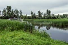 Turystyczna łódź na rzece w rezerwacie przyrody Obraz Stock