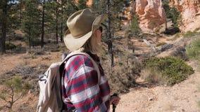 Turystyczna kobieta Patrzeje Up Przy Wielkimi skałami Bryka sosny I jar zbiory
