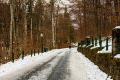 Turystyczna para na ich sposobie Peles kasztel w Sinaia, Rumunia Lodowata droga w lesie zdjęcia stock