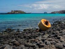 Turystyczne łodzie w Galapagos wyspach Zdjęcie Royalty Free