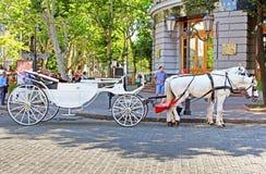 Turystyczny brougham na ulicach fotografia royalty free