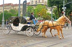Turystyczny brougham z ludźmi na ulicach, Lviv, Ukraina obraz stock