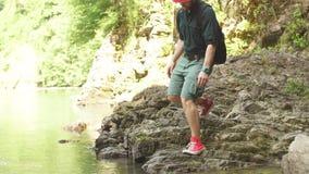 Turystyczny facet siedzi blisko jeziora w dzikim lata drewnie z plecakiem wyprawa zbiory