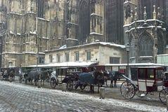 Turystyczny fracht rysuje koniami i zostawać niedaleką St Stephen ` s katedrę, Wiedeń obrazy stock