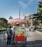 Turystyczny kupienie fasta food posiłek od tradycyjnej turecczyzny Simit Bagel Tureckiej fury w sułtanu Ahmed kwadracie, Istanbuł Obrazy Stock