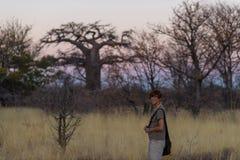 Turystyczny odprowadzenie w krzaku akacja gaju przy zmierzchem i, Bushmandland, Namibia Przygoda i eksploracja w Afryka obraz ton zdjęcie royalty free