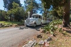 Turystyczny pociąg jedzie przez parka narodowego Brioni zdjęcia royalty free
